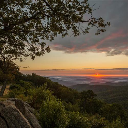 A scenic view from Shenandoah National Park, where Julie and Lollie spent the last days of their lives in Virginia's Blue Ridge Mountains. Unknown photographer, from National Parks image gallery.