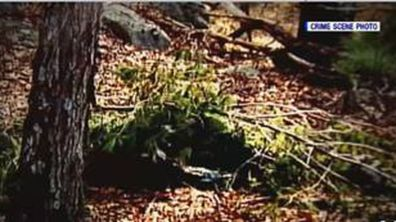 This crime scene photo shows David's remains where there were left, camouflaged by a heap of deliberately-placed pine branches.