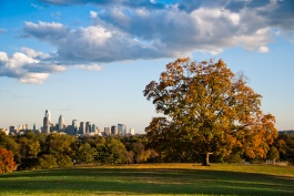 Fairmount Park is Philadelphia's largest park, spanning over 2000 acres. In 2003, a serial offender attacked 3 female runners, assaulting 2 and murdering 1: 30 year old Rebecca Park. Photo by Frederikto.