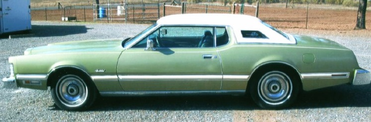 Asha may have been seen getting into a car like this one on the night other dissappearance.